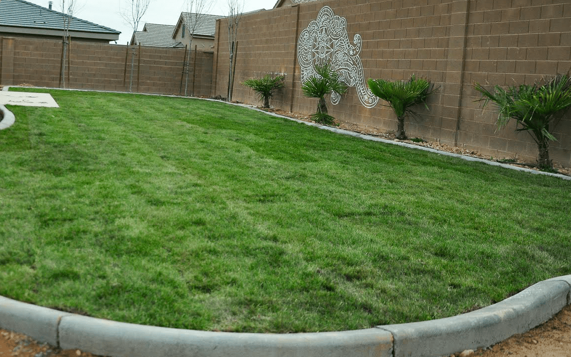 Sod and Curbing in St. George Utah